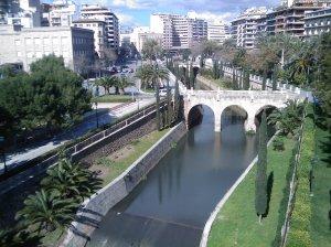 Vista de Palma (1)