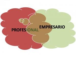 Profesional-empresario-300x225